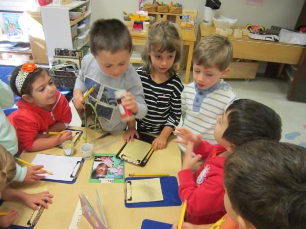 Preschool Steam Education