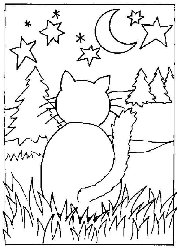 Cat C6 6 Manual