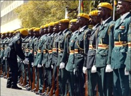 "Zimbabwe National Army troops were deployed to DR Congo under former President Laurent Kabila. A blogger, formerly of Zimbabwe, mused: ""Why is it that Mugabe should deploy his army, a foreign force, into the DRC – when he reacts angrily to the idea of military invention in Zimbabwe?"""