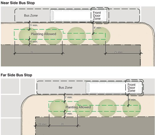 Tree plantings in bus zones