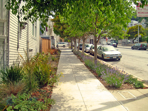 stormwater overview sf
