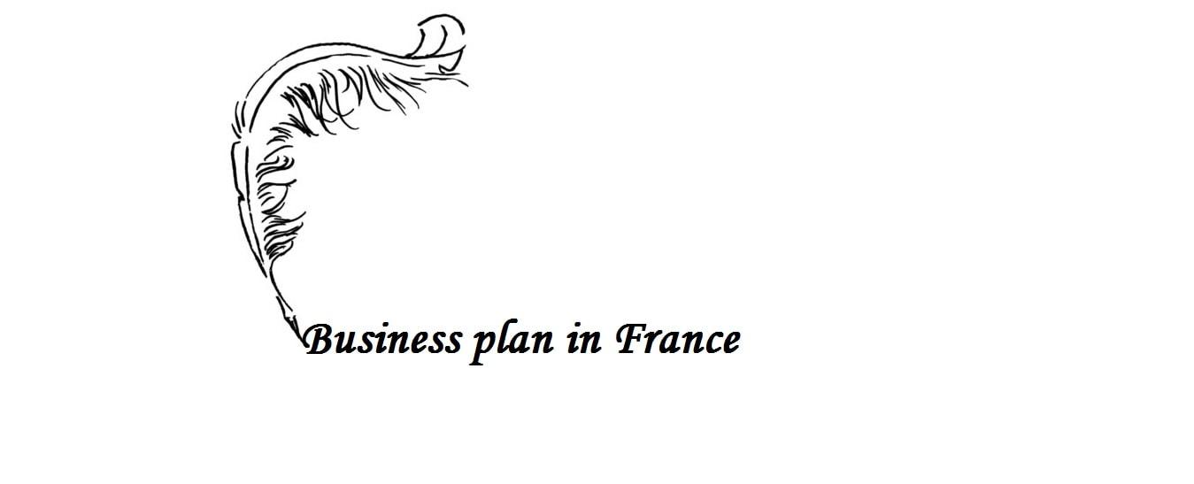 Multiple business plan in France