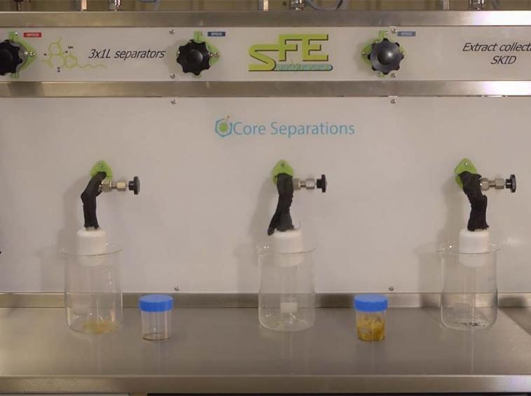 Cannabis pure oil supercritical extraction - sfe process