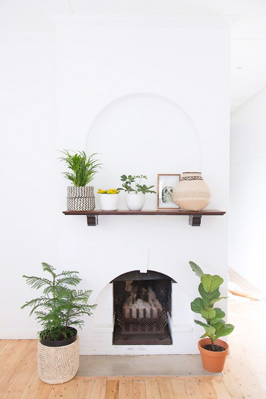 simply styled mantel with plants / sfgirlbybay