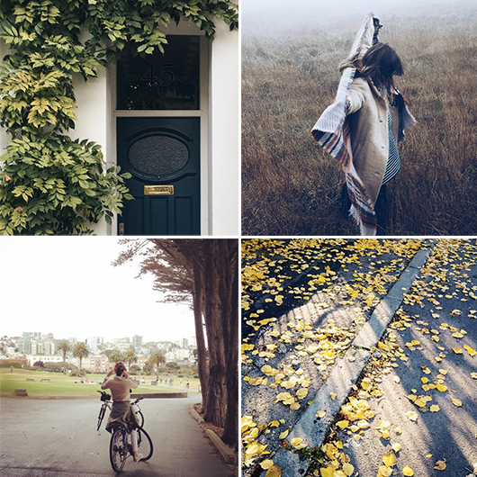 autumn inspired imagery / sfgirlbybay