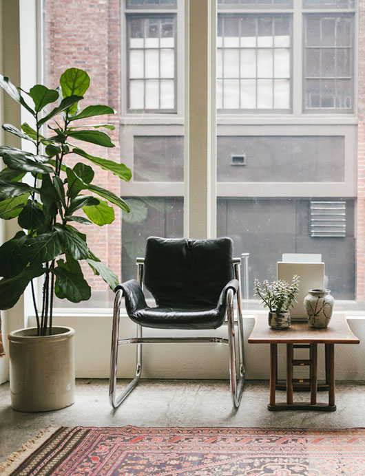 fiddle leaf fig tree and homestead seattle vintage wares / sfgirlbybay
