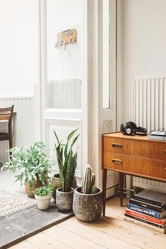 potted plants and home furnishings. / sfgirlbybay
