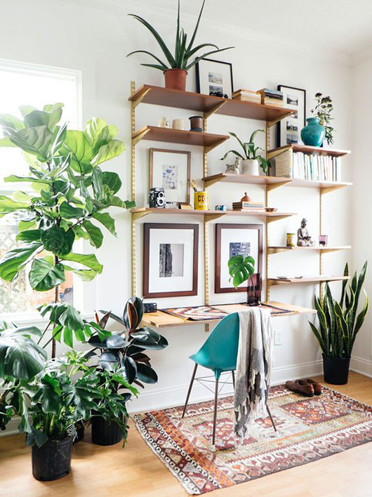 open shelving and potted plants. / sfgirlbybay