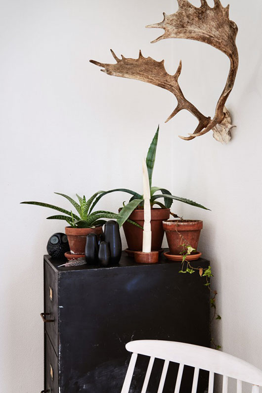antlers and potted plants fetured in The Kinfolk Home book / sfgirlbybay