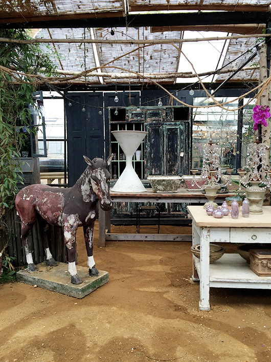 eclectic decor inside the greenhouse at petersham. / sfgirlbybay