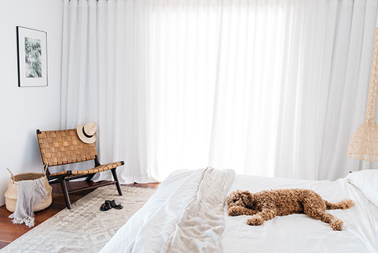 dog on white bed in villa palmier / sfgirlbybay