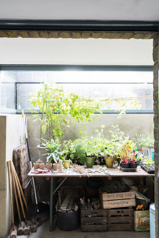 plants on folding table with crates below / sfgirlbybay