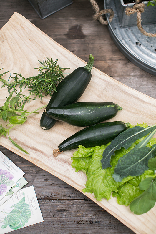 growing vegetables in a garden at home / sfgirlbybay