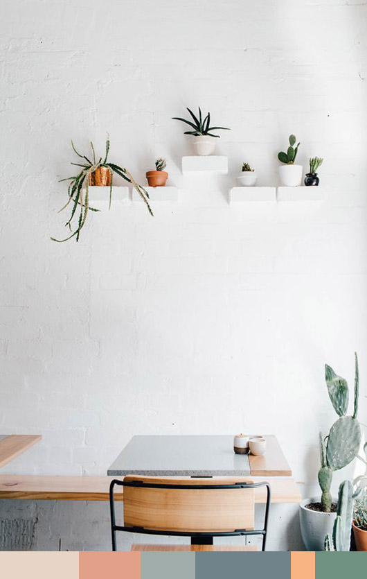 white wall with floating white shelves and potted succulent plants / sfigrlbybay