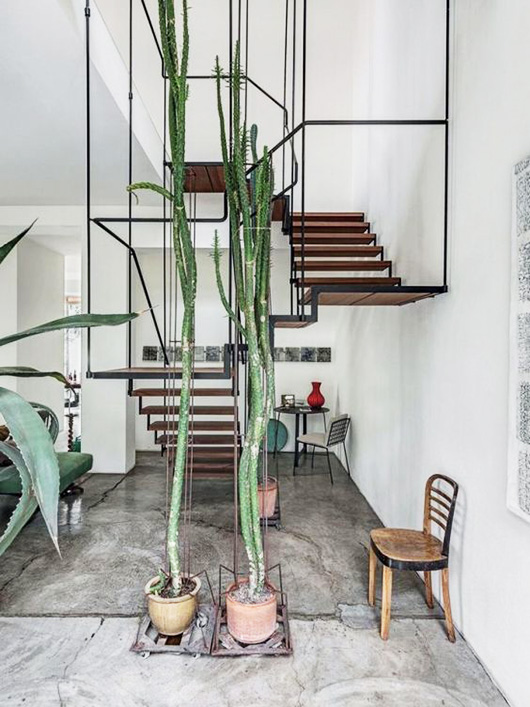 suspended modern staircase and tall cacti / sfgirlbybay