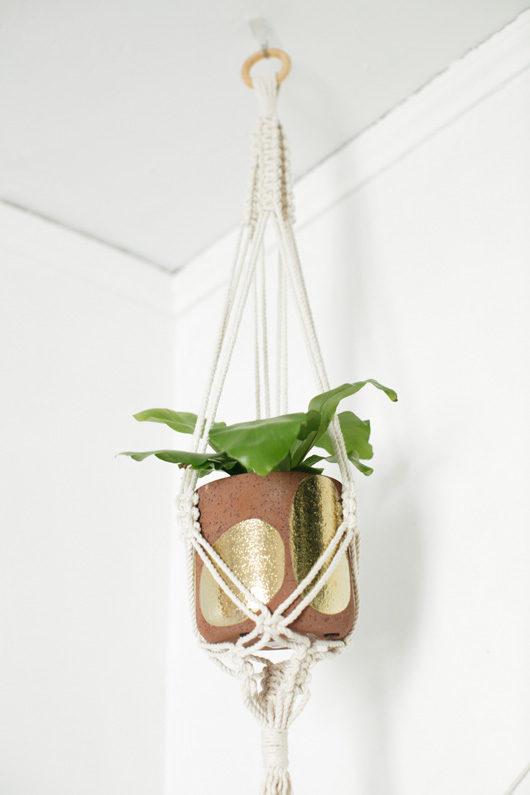 hanging plant in ceramic pot in lark and arrow studio. / sfgirlbybay