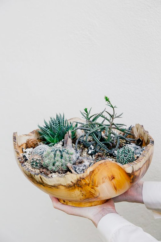 shell planter. / sfgirlbybay