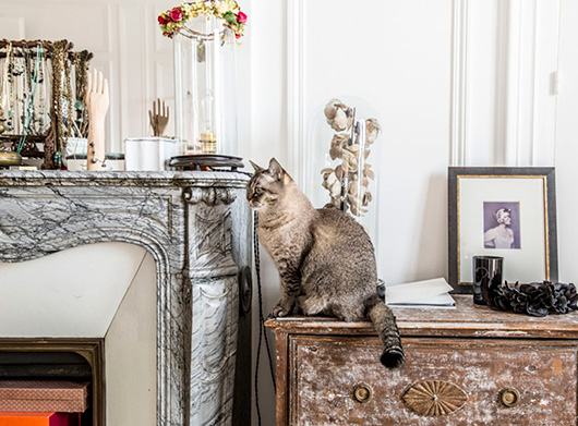 cat on vintage dresser in the CEO of Isabel Marant's paris apartment / sfgirlbybay