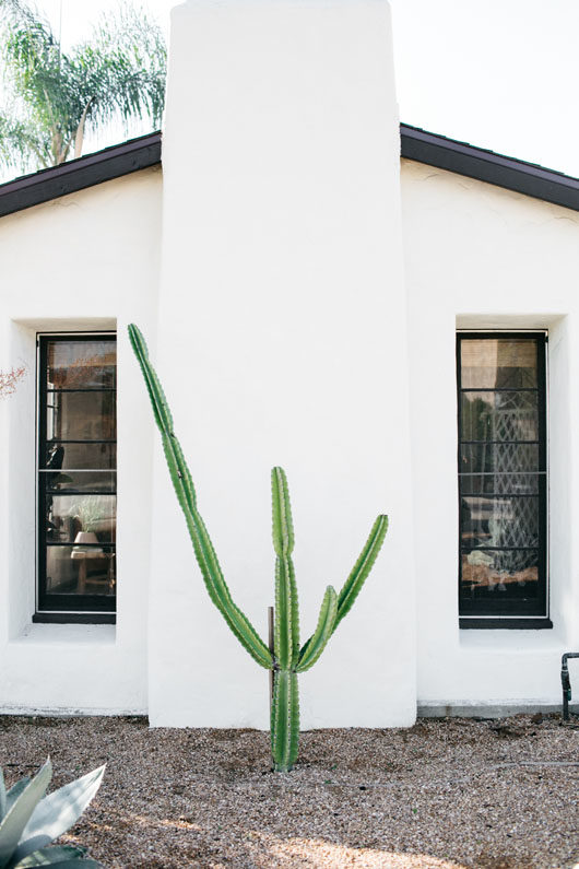 cactus in front of white DTLA home. / sfgirlbybay