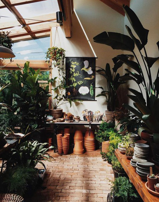 greenhouse with pots and plants. / sfgirlbybay