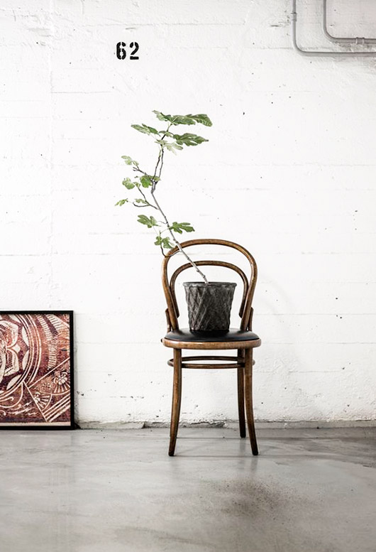 vintage bentwood chair with potted plant. / sfgirlbybay