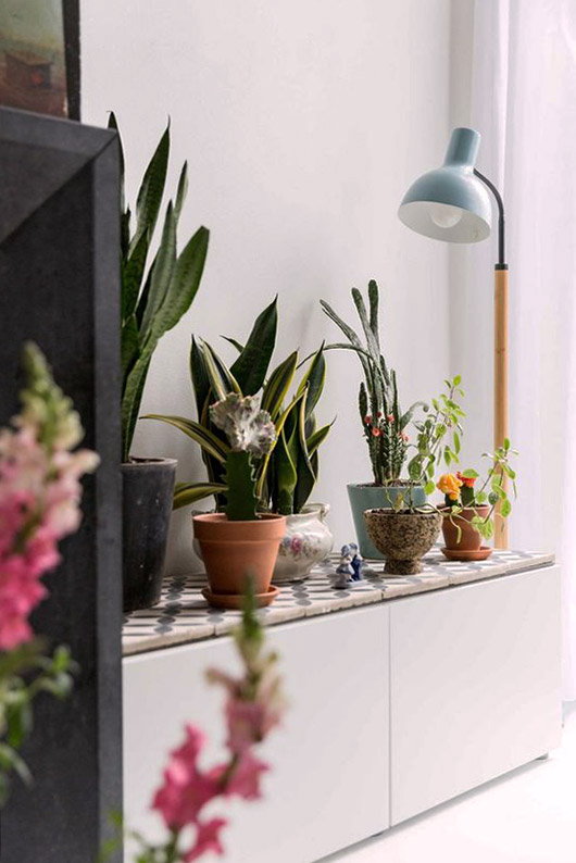 modern floor lamp with potted plants. / sfgirlbybay