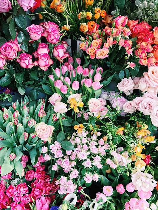 vibrant colorful flowers in europe. / sfgirlbybay