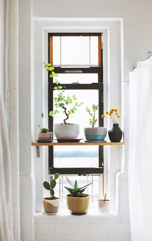 diy shelf with potted plants in window. / sfgirlbybay