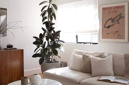indoor potted plant and art print in paige geffen.'s l.a. home. / sfgirlbybay