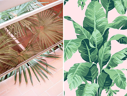 pink and green palm inspiration. / sfgirlbybay