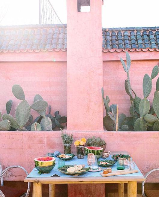 pink patio walls with cacti. / sfgirlbybay