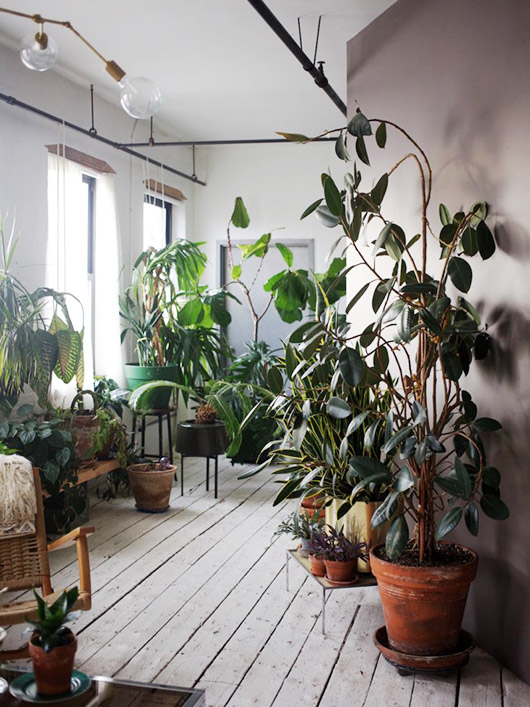 painted white floors and potted plants. / sfgirlbybay