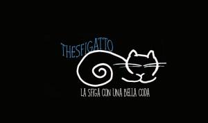 thesfigatto