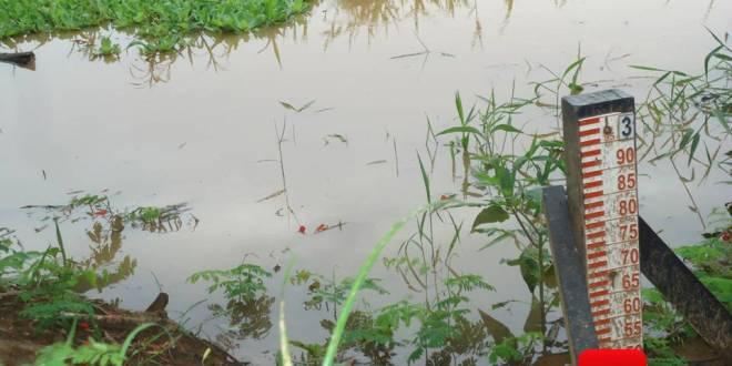 rio paraíba do sul vara de medição 56