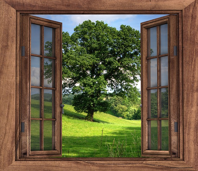 Tips to keep your house clean windows