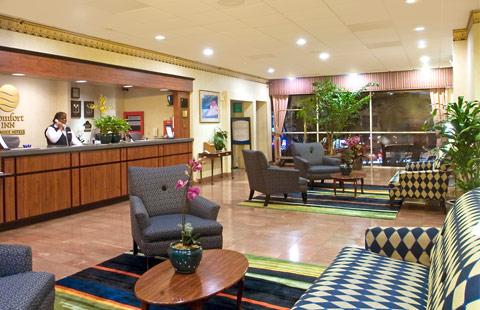 Comfort Inn By The Bay San Francisco Hotel Review