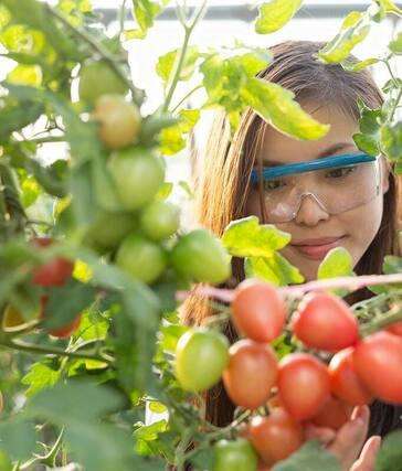 聖峪華協居家園藝生活講座Home gardening life lecture - San Fernando Valley Chinese Cultural Association