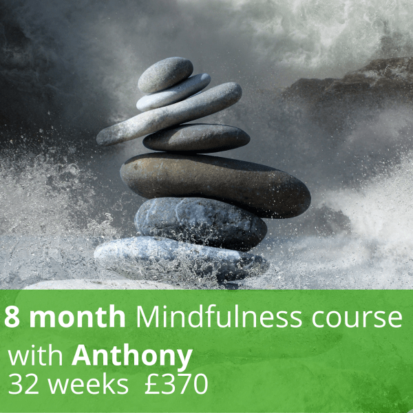 8 Month Mindfulness Course