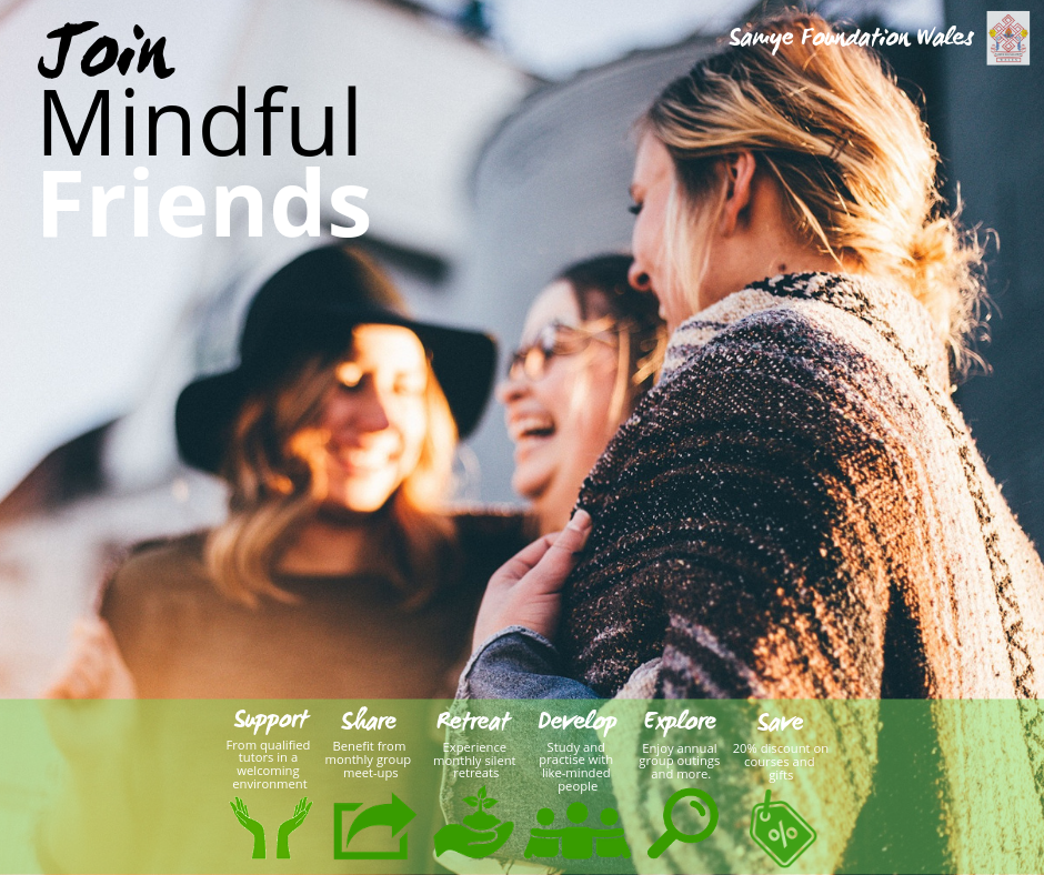 Mindful Friends Landscape Image