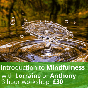 Introduction to Mindfulness Half Day Workshop