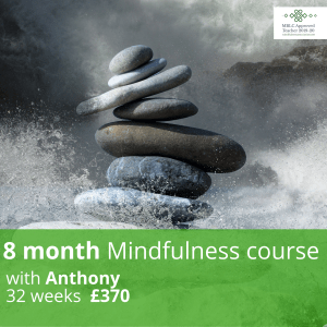 8 Month Mindfulness Course May 14th