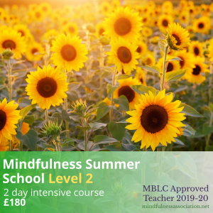 Mindfulness Summer School Level 2 - Shop Icon