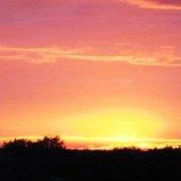 joan sunrise small