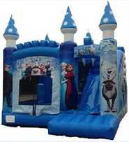Frozen Snow Flake Bouncer