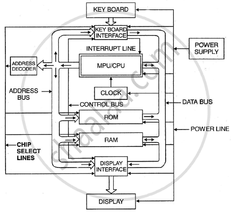 Draw a Neat and Labelled Block Diagram of Micro-computer