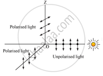 Show, with the Help of a Diagram, How Unpolarised Sunlight