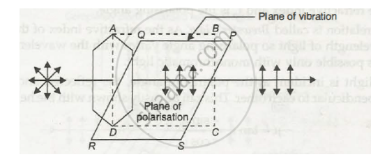 Draw a Neat Labelled Diagram Showing the Plane of