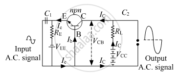 Draw a circuit diagram of an n-p-n transistor with its
