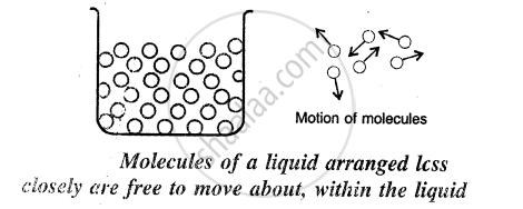 Describe the Molecular Model for a Liquid. I-low Does It