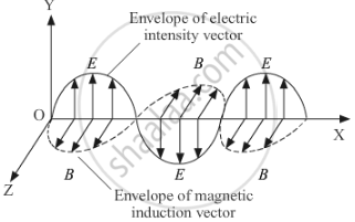 Draw a Schematic Sketch of the Electromagnetic Waves